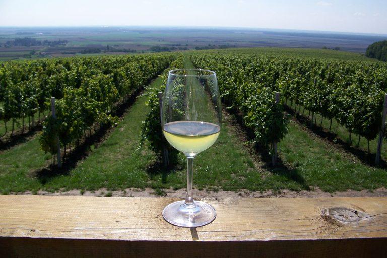 Horvát bortermelés