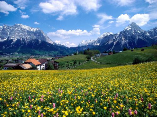 Alpok
