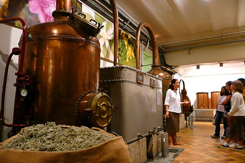 Parfümgyár, Grasse
