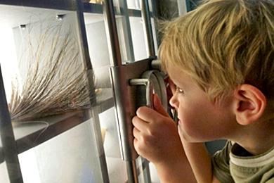 ZOOM Gyerekmúzeum