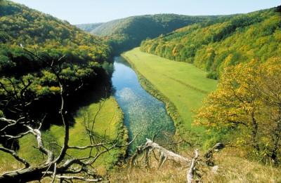 Thayatal Nemzeti Park