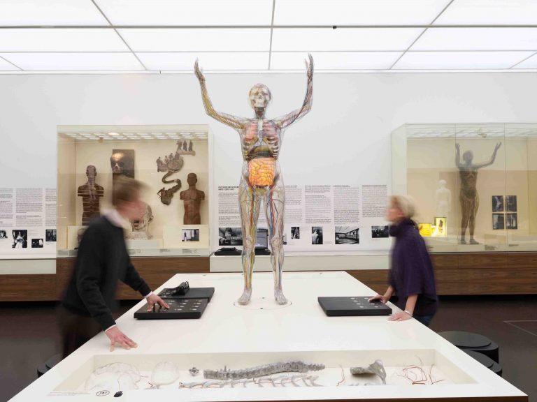 Higiénia Múzeum - Drezda