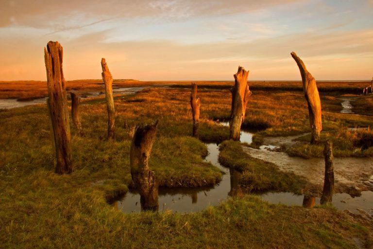 Észak-Norfolki tengerpart