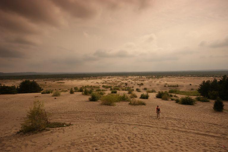 Bledówi-sivatag