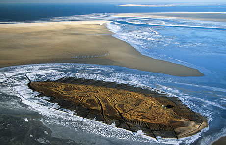 Watt-tenger