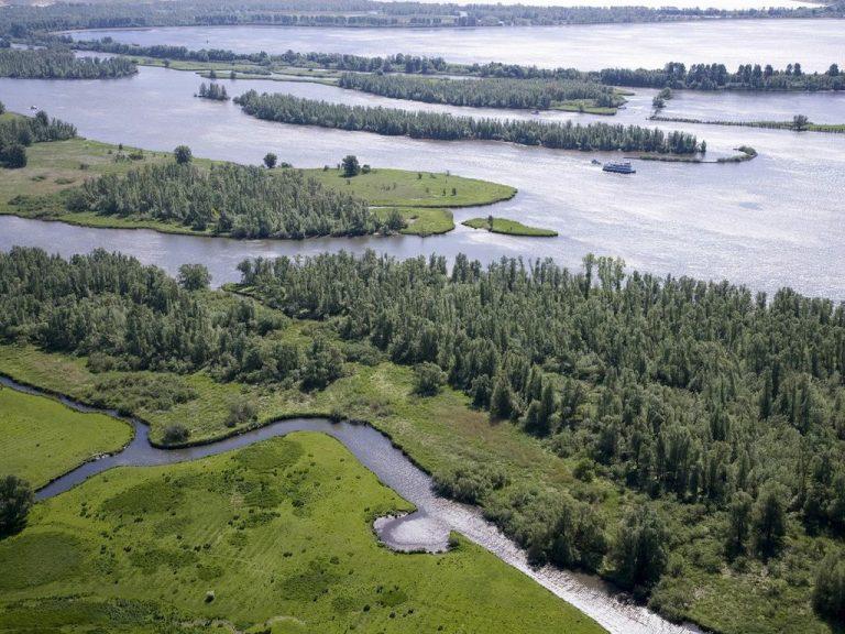 De Biesbosch Nemzeti Park