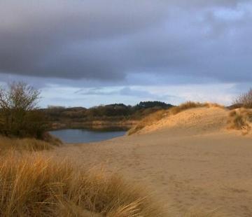 Zuid-Kennemerland Nemzeti Park dűnéi