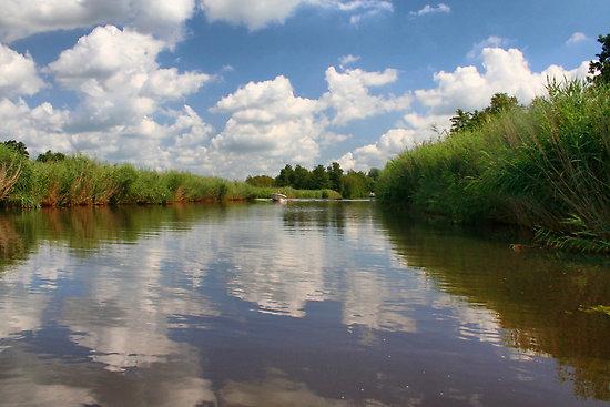 Weerribben-Wieden Nemzeti Park