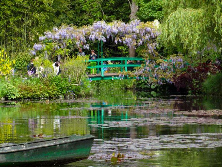 A vízi kert