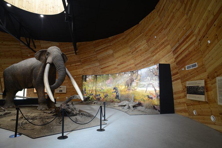 Pliocén park Dorkovoban
