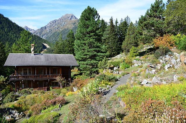Flore-Alpe Növénykert
