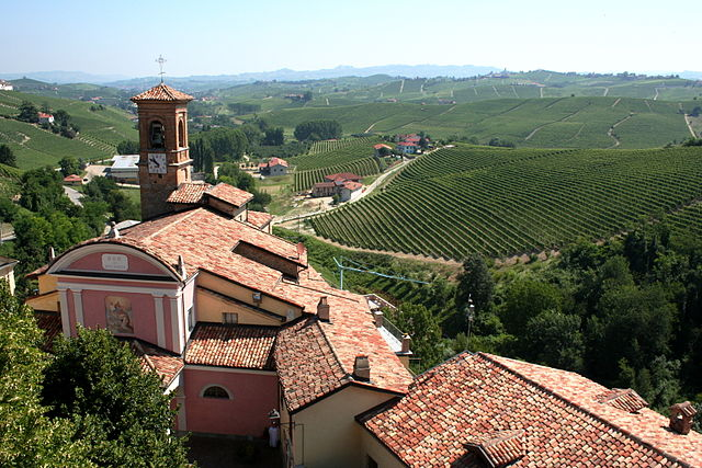 Piemonti borvidék