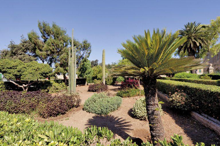 Argotti kertek