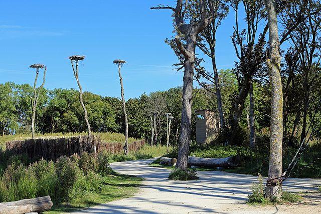 Het Zwin Természetvédelmi Terület
